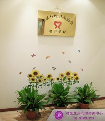 林紫北京心理咨询中心办公咨询环境