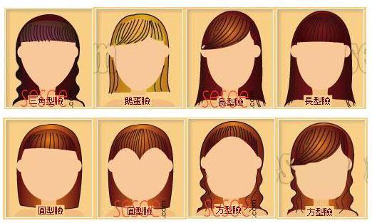 根据脸型设计发型的书